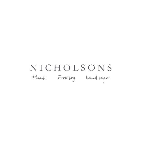 NICHOLSONS